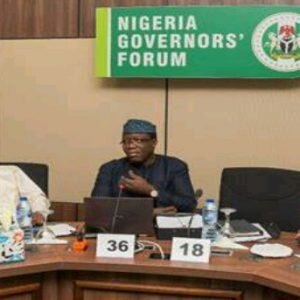 Read more about the article Nigerian Central Bank to Develop the Agricultural Sector with Governors