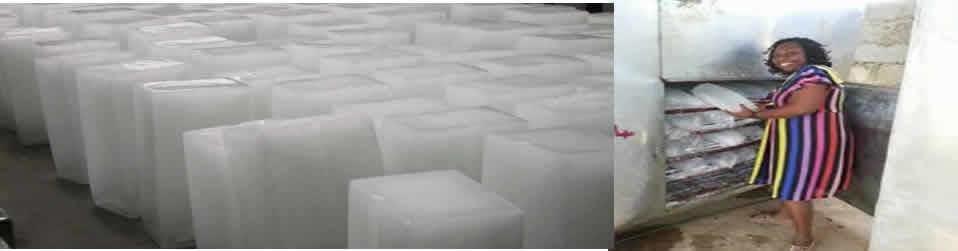 Hit millions making ice block in recession – The Sun Nigeria